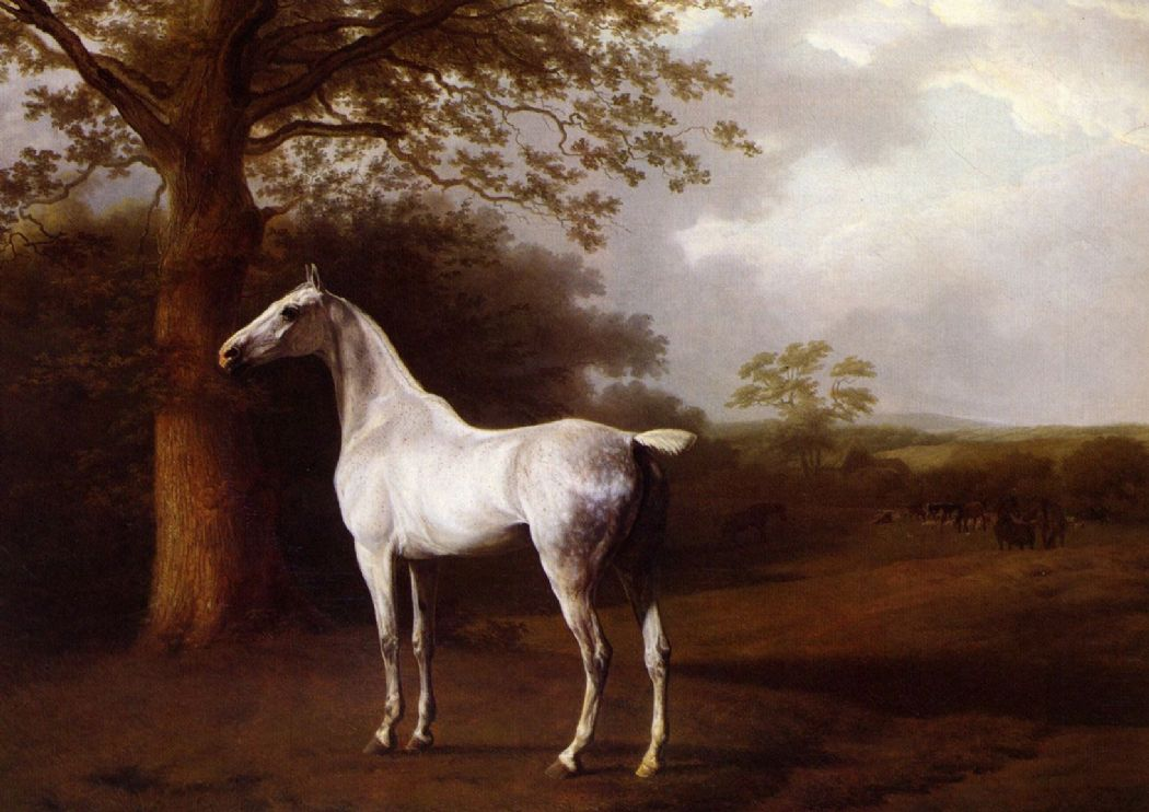 Agasse, Jacques Laurent: White Horse in Pasture. Fine Art (Animal) Print/Poster. Sizes: A4/A3/A2/A1 (00650)